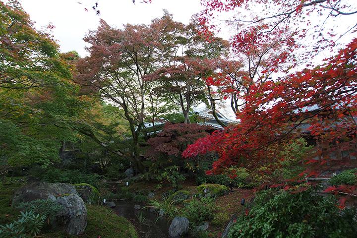 20151115_hogonin_temple-03.jpg