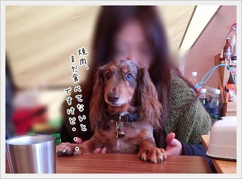 fc2_2015-11-27_03.jpg