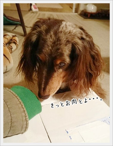 fc2_2015-12-04_01.jpg