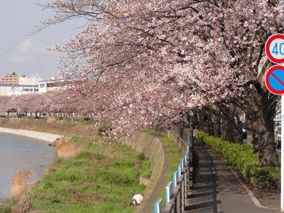 2014-03-28T00-16-05-7fc86.jpg