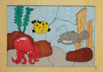海の魚たち