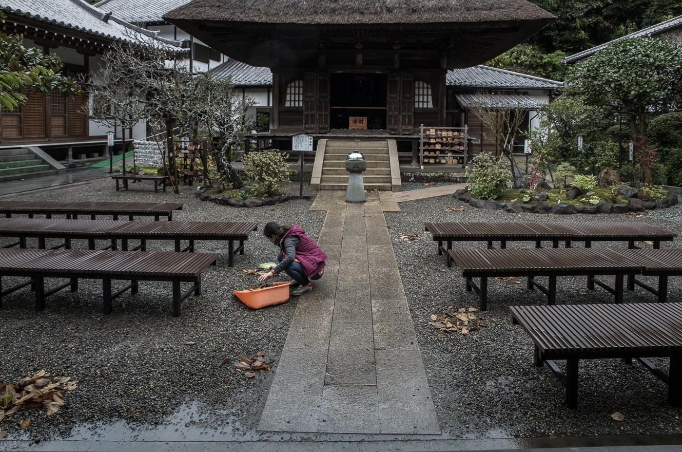 151126鎌倉 (2 - 1)-18