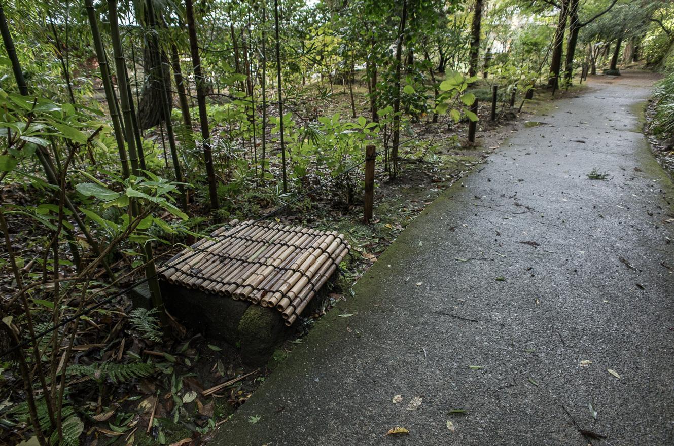 151126浄智寺 (2 - 1)-11