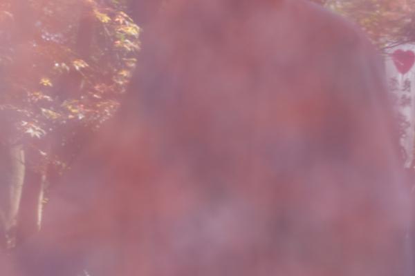 映り込み赤