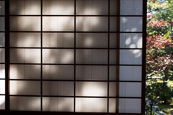 障子の光と影