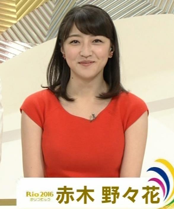 赤木野々花 NHKの巨乳アナキャプ画像(エロ・アイコラ画像)