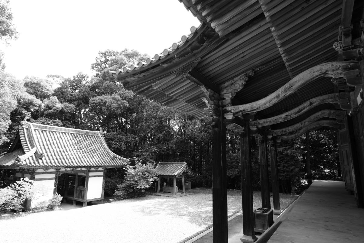 tyoukouji_16-06-14_0038.jpg