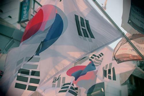 韓国 新興国 国旗