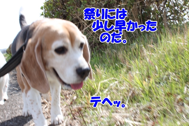 IMG_8913.jpg